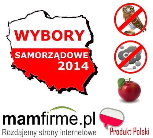 strona www wybory samorzadowe 2014